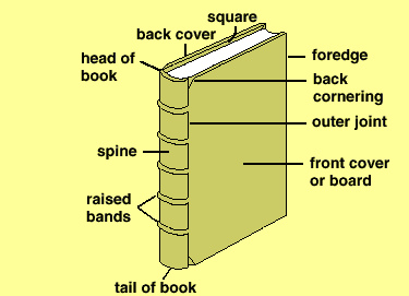 Books archives words by sally diagram of a book ccuart Images